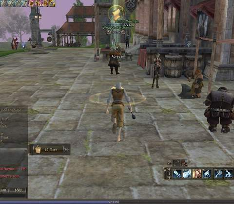 Lineage II in-game screenshot 3